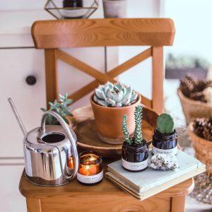greenway szója gyertya szójagyertya vegan vegán cozy days