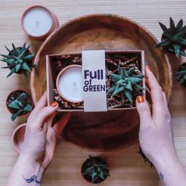 greenway vegan szója gyertya szójagyertya full of green